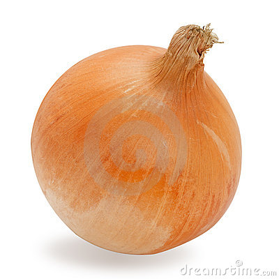 Fresh onion isolated on white