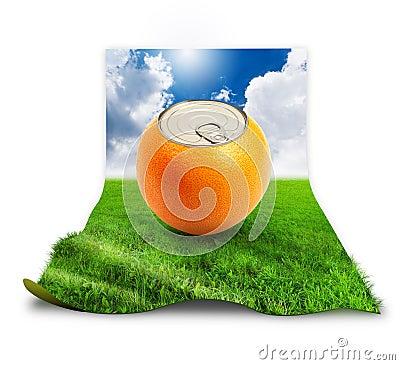 Fresh orange on grass.