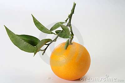 Fresh orange with leaves