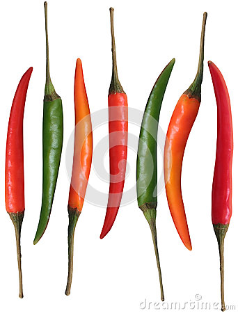 Free Fresh Organic Colorful Chillies Isolated On White Royalty Free Stock Images - 28313729
