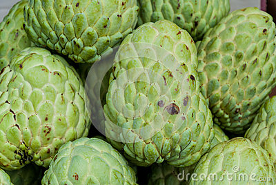Fresh organic custard apples