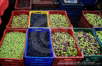 Fresh Organic Different Types Of Olives