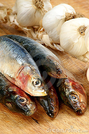 fresh organic sardine on a timber board