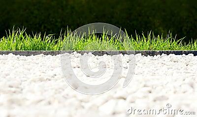 Fresh park lawn