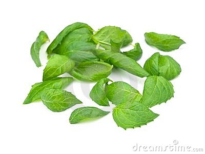 Fresh picked spearmint leaves