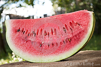 Fresh piece of watermelon