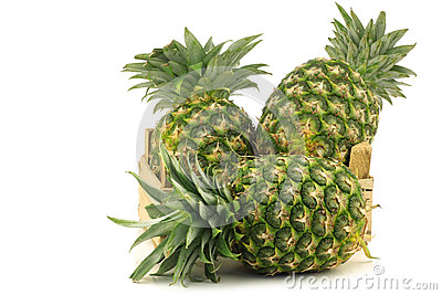 Fresh pineapple fruits in a wooden crate