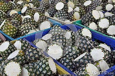 Fresh Pineapples from farm