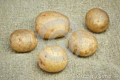 Fresh Potatoes on the Sacking