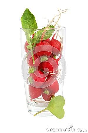 Free Fresh Radish Stock Images - 25048524