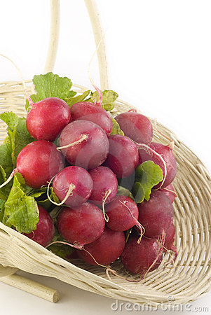 Fresh Radishes in a Basket