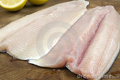 Fresh rainbow trout filets