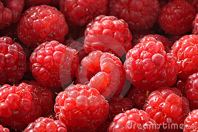 Fresh raspberry background