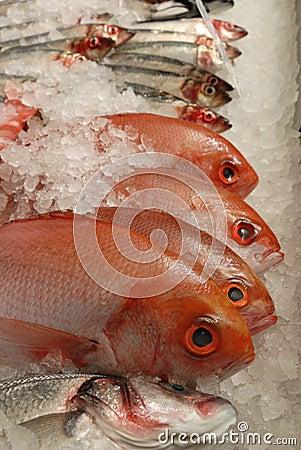 Free Fresh Raw Fish On Fishmonger S Slab Stock Photos - 4124613