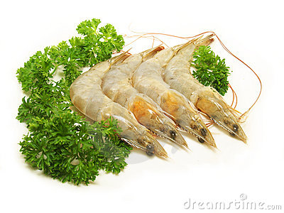Fresh Raw Shrimp