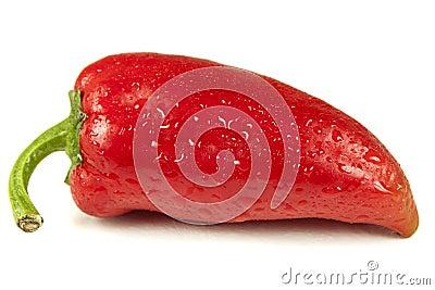 Fresh red bell pepper