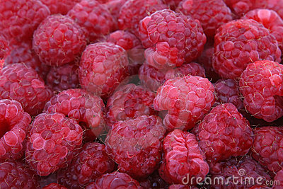 Fresh red berry fruit