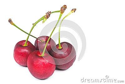 Fresh red cherry on white background