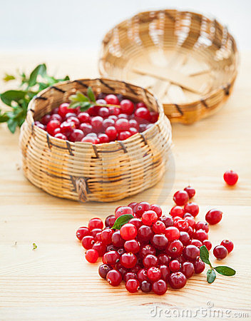 Free Fresh Red Cranberries Royalty Free Stock Photos - 23748688