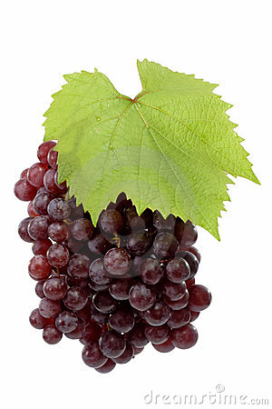 Free Fresh Red Grapes Stock Photo - 4187020
