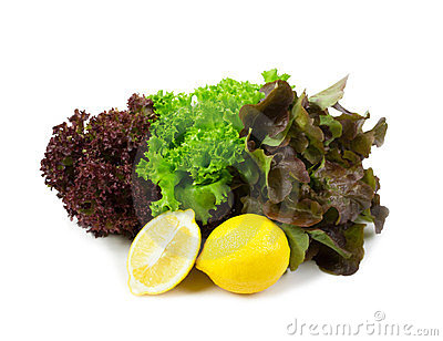 Fresh red and green lettuce