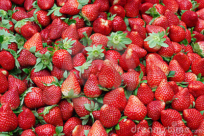 Fresh Red Ripe Strawberries