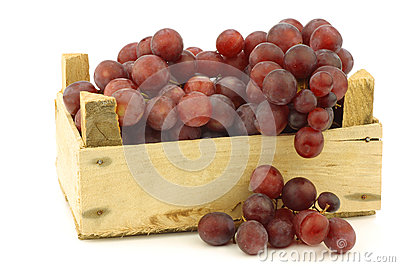 Fresh red seedless grapes on the vine