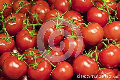Fresh ripe cherry tomatoes