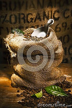 Fresh roasted organic coffee beans