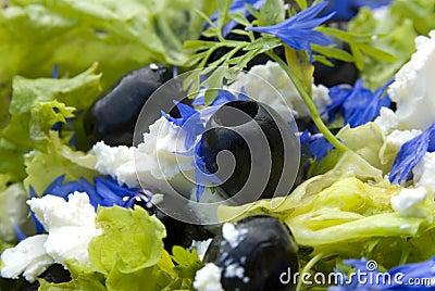 Fresh salad with black olives