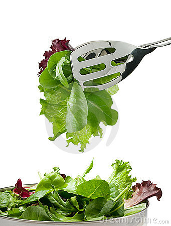 Free Fresh Salad Leaves Royalty Free Stock Photo - 314535