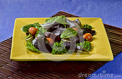 Fresh Salad in an Ochre Plate