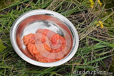 Fresh salmon red caviar