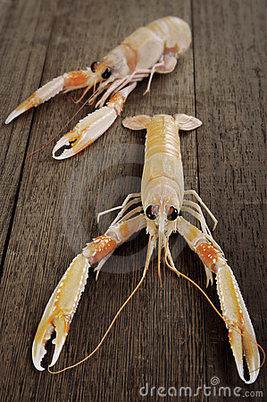 Free Fresh Shrimp Scampi Stock Photo - 2888000
