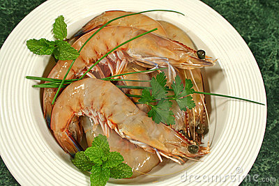 Fresh Shrimps 1