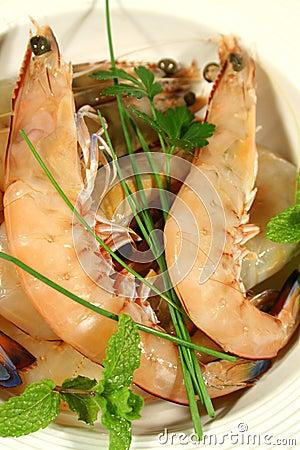 Fresh Shrimps 2