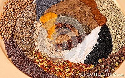 Fresh Spice s
