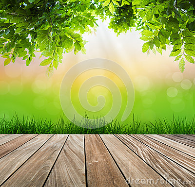 Fresh spring green grass and wood floor with green leaf.