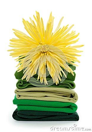 Fresh spring laundry