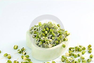 mung beans or green gram beans in white background for cooking food ...