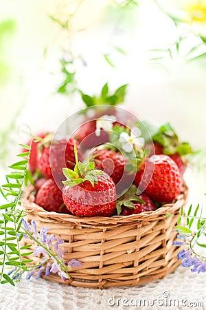 Free Fresh Strawberries Royalty Free Stock Photography - 13974907