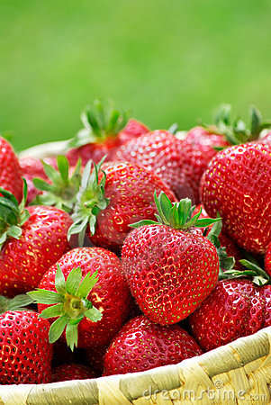 Free Fresh Strawberries Royalty Free Stock Images - 16450529