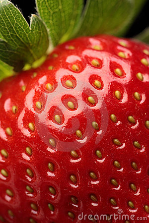 Free Fresh Strawberry Close-up Royalty Free Stock Image - 14786506