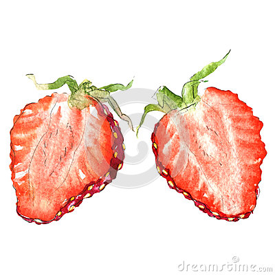 Free Fresh Strawberry Slice, Half Berry, Isolated, Watercolor Illustration On White Royalty Free Stock Photo - 84841915