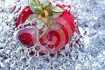 Fresh strawberry in water
