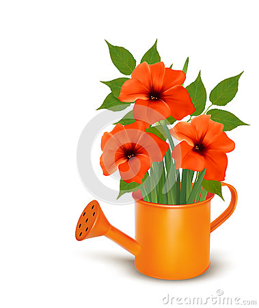 Fresh summer flowers growing in a watering can.