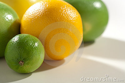Fresh taste citrus fruits