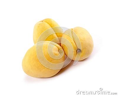 Fresh tasty apricots still-life.