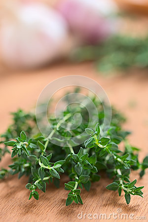 Free Fresh Thyme Royalty Free Stock Photography - 26506917