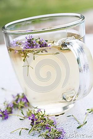 Free Fresh Thyme Tea Stock Photos - 38838383